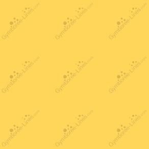 E4c9a8b988619a383244bd72bd2762b2_medium