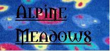 84af6eaa02d38e59c15042a1bde71b11_medium